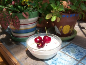 Dark Sweet Cherries with Vanilla Greek Yogurt